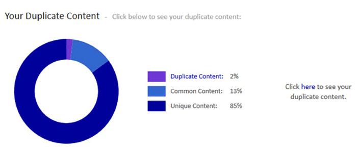 Siteliner's duplicate content summary